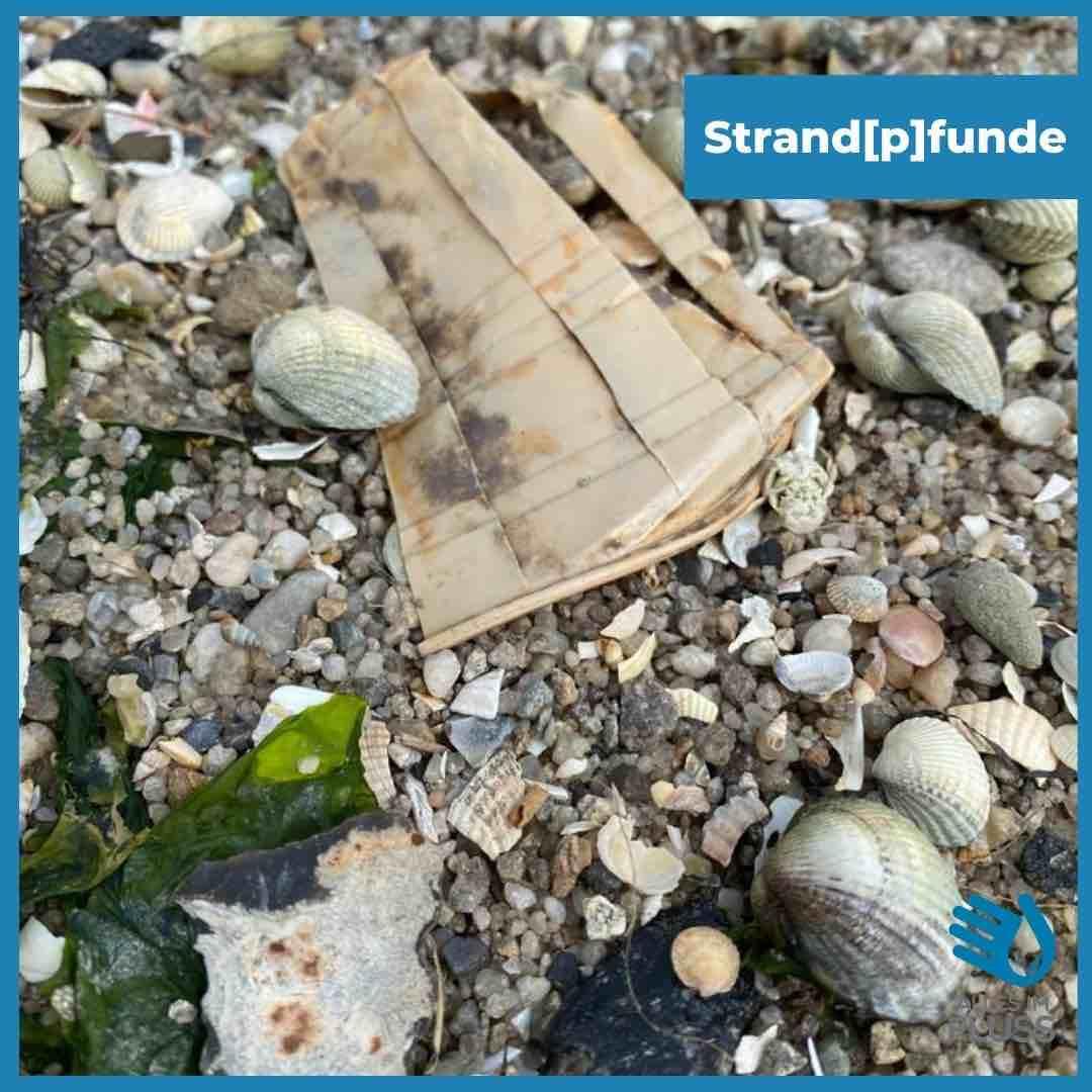 Strandpfunde Plastikbecher