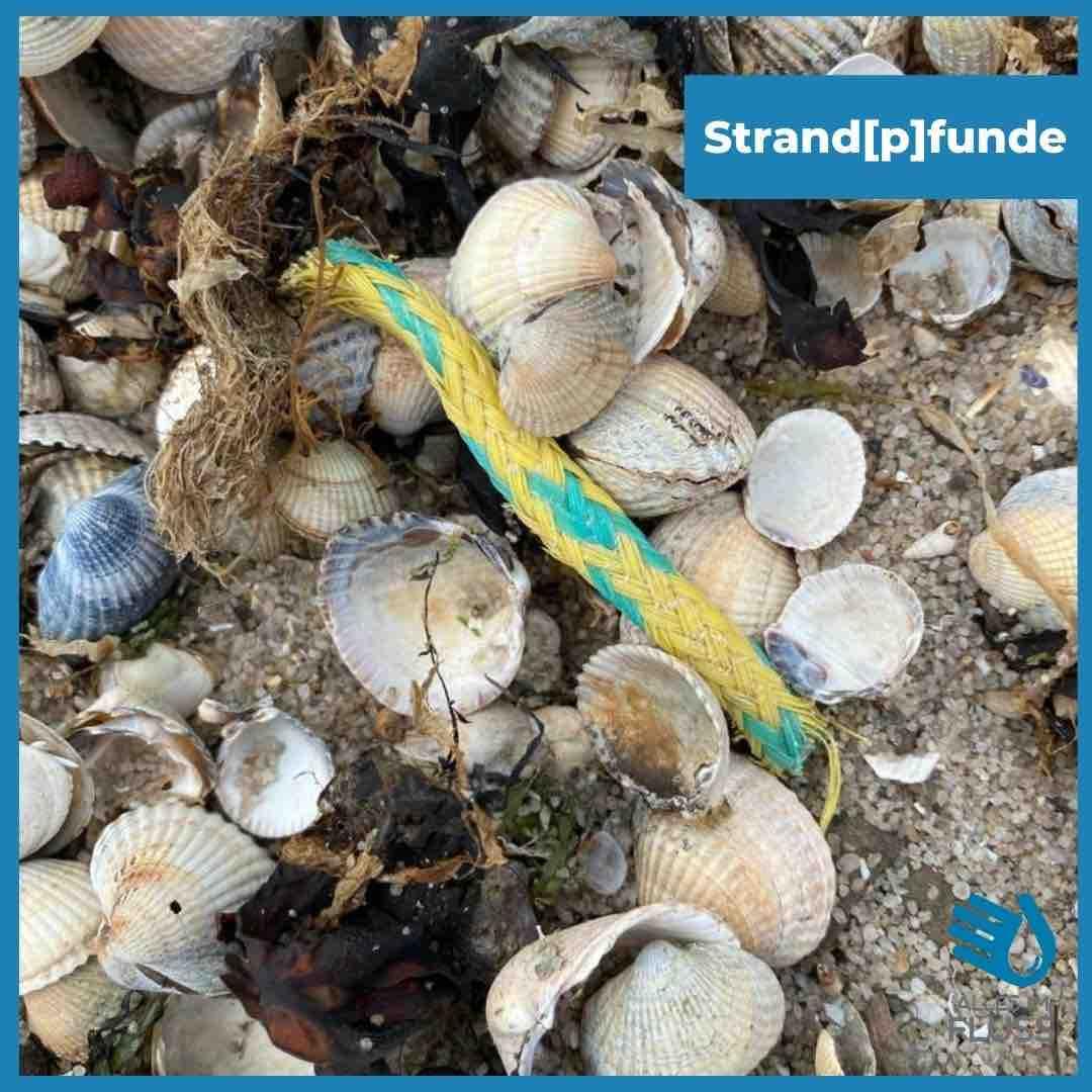 Strandpfunde buntes Seil