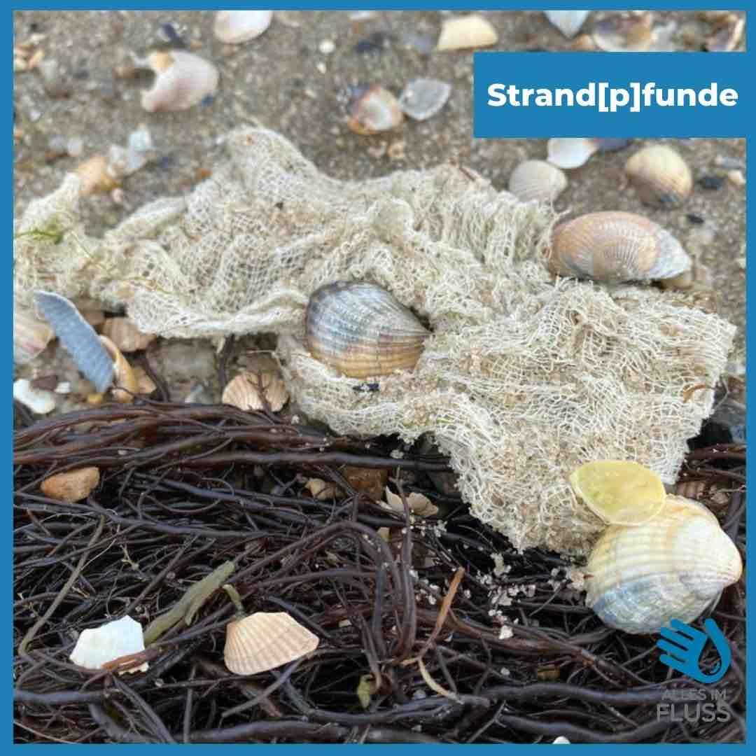 Strandpfunde feines Netz
