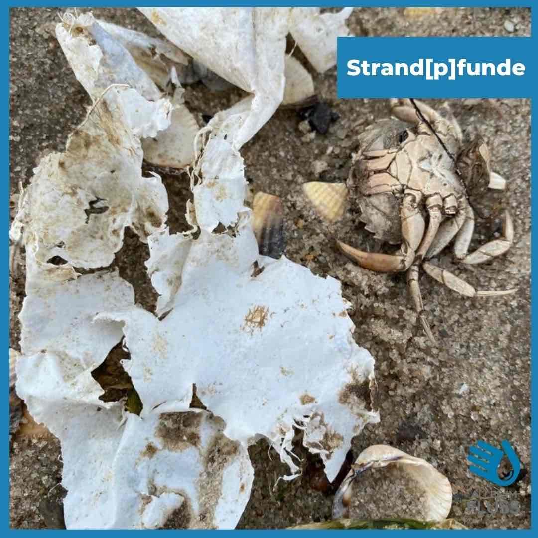 Strandpfunde Plastik