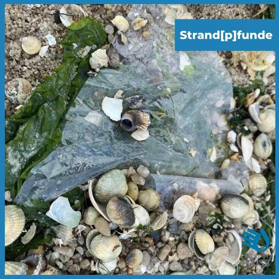 Strandpfunde Plastiktüte