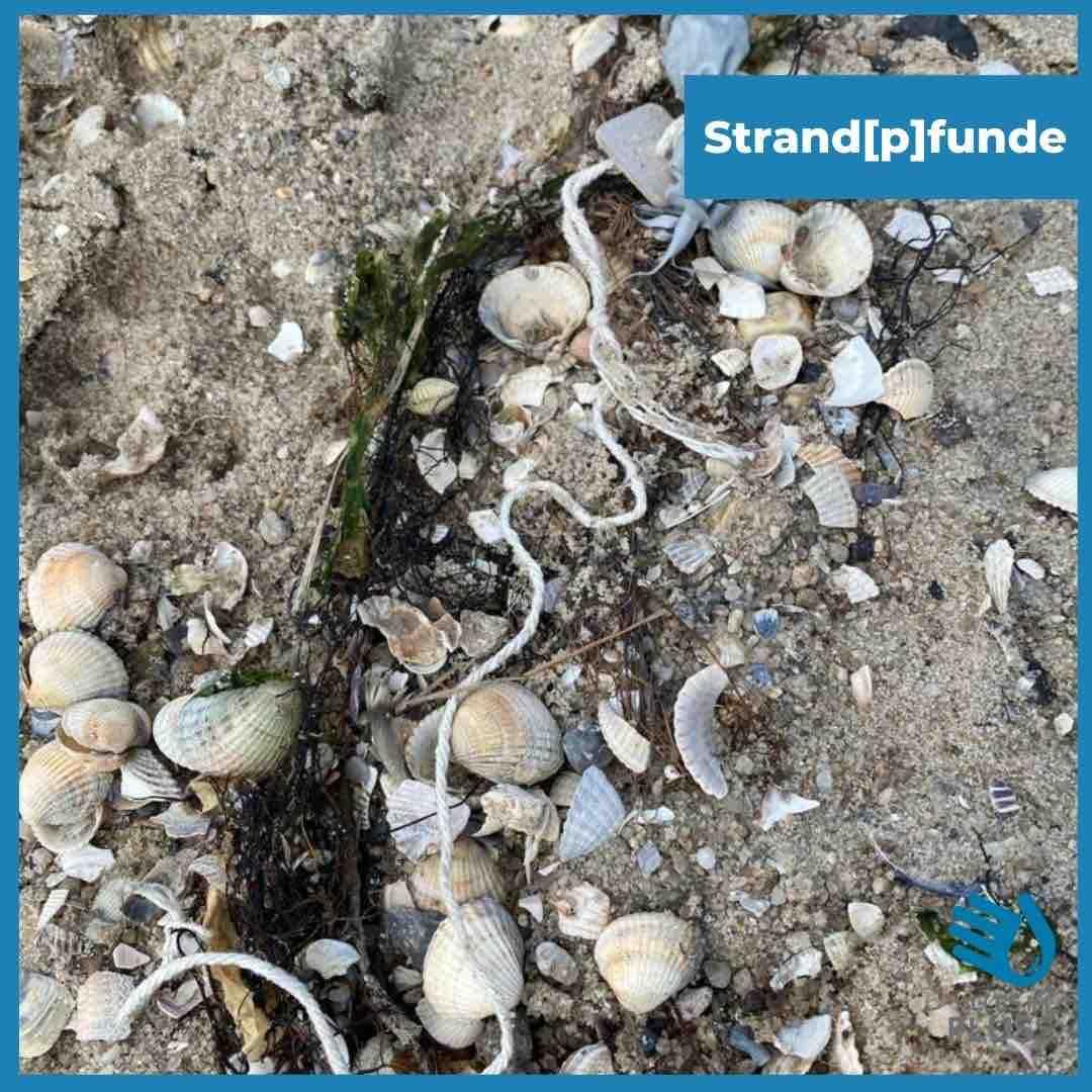 Strandpfunde dünnes Seil