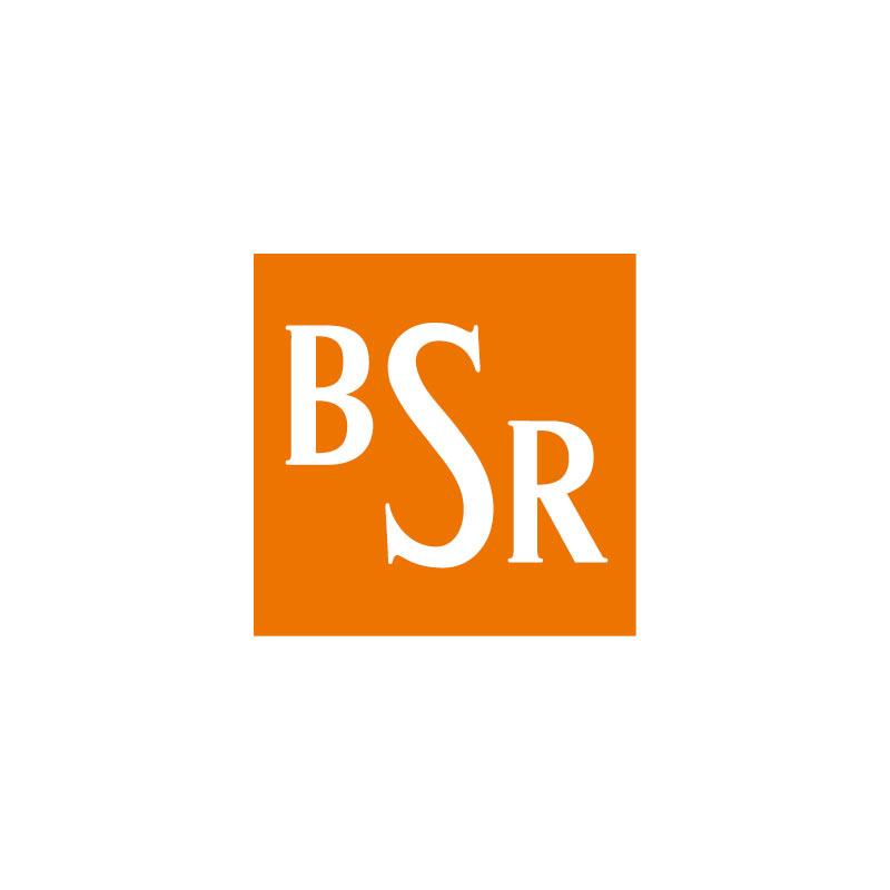 Das Logo des Netzwerkpartners BSR
